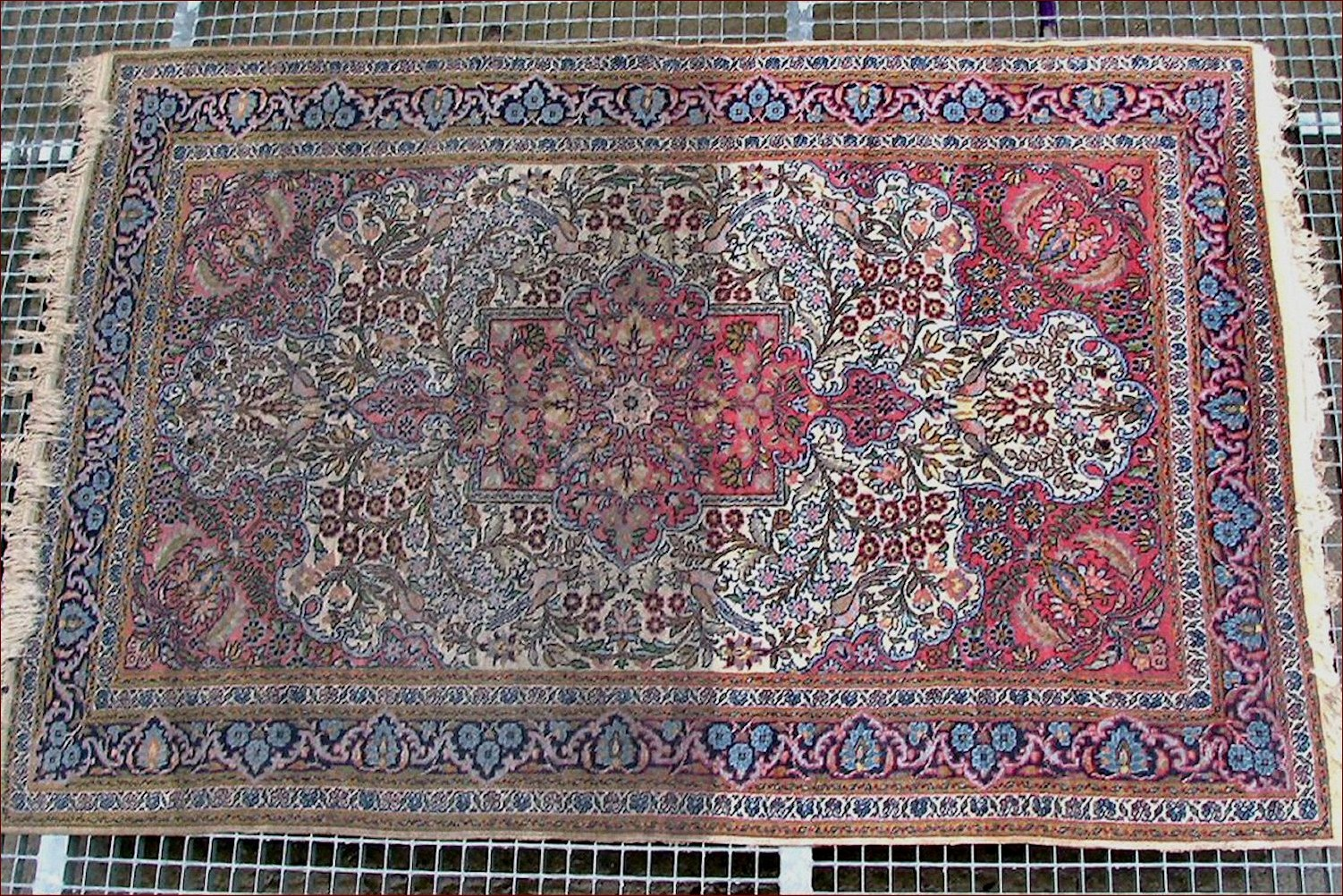 Carpets washing . Cleaning rugs Agra