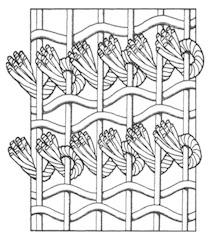 Nodo senneh persiano asimmetrico
