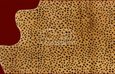Pelle intera leopard 200X160 140820835346 2
